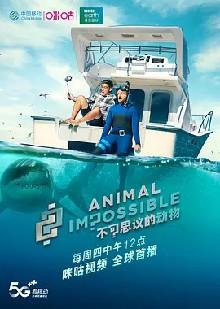 不可思议的动物 第一季