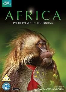 非洲 第一季