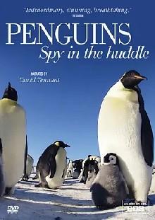 企鹅群里有特务 第一季