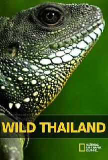 野性泰国 第一季