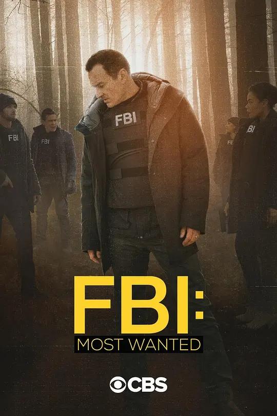 联邦调查局:通缉要犯 第三季